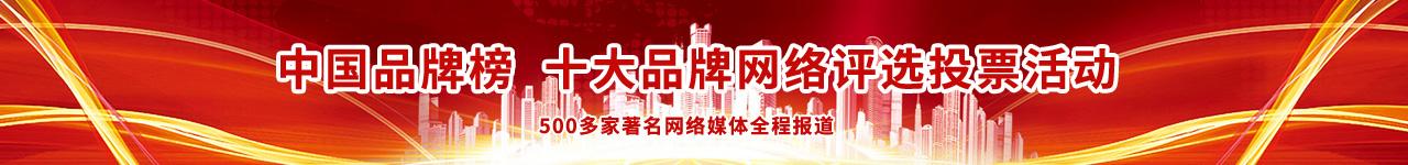 中国十大品牌网络评选活动